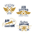 aviation retro airplane sport team icons vector image vector image