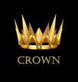 royal gold corona on black background vector image vector image