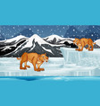 scene with sabertooth on ice vector image vector image