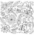 sketchy line art Doodle Spring vector image