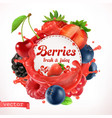 berries 3d label vector image vector image