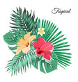 bouquet composition exotic flowers tropical leaves vector image vector image
