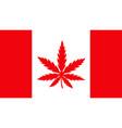 canada flag with marijuana weed leaf vector image