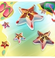 Cartoon seastar on the seashore vector image