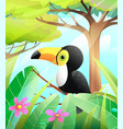 cute toucan in green nature scenery vector image vector image