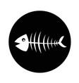 fish skeleton icon design vector image