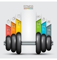 Fitness statistics and infographics with dumbbell vector image