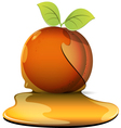 peaches in caramel vector image vector image