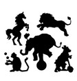 set of circus silhouette animals performance vector image vector image