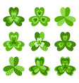 shamrock leaves symbol of ireland vector image