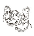 sketch sneakers vector image