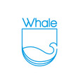 whale logo vector image vector image