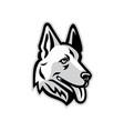 alsatian dog mascot vector image vector image