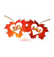 autumn leaves with hearts isolated on white vector image