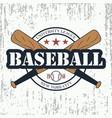 baseball grunge typography vector image