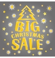 Big christmas sale with tree and stars vector image