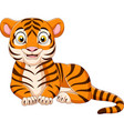 cartoon funny tiger isolated on white background vector image vector image