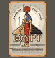 egypt land of gods and pyramids historic museum vector image