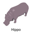 hippo icon isometric style vector image vector image