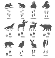 set animal and bird trails vector image vector image