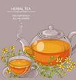tutsan tea vector image
