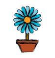 beautiful flower in a pot icon vector image vector image