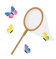 butterfly net and colorful butterflies classic vector image vector image