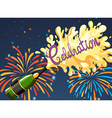Celebration night with firework and champagne vector image vector image