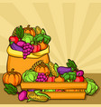 harvest with seasonal fruits and vector image vector image