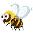 Little bee flying on white background vector image vector image