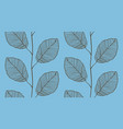 seamless pattern from leaves vector image vector image