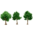 silhouettes of urban trees vector image