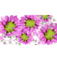 spring daisy flowers background watercolor vector image vector image