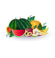 watermelon melon apple fruits on white background vector image
