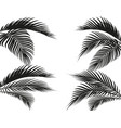 different in form tropical black and white palm vector image vector image