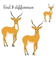Find differences kids layout for game gazelle vector image vector image