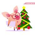 funny pig with glasses and christmas tree vector image vector image