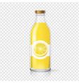 lemon juice glass bottle with juice label vector image vector image