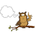 owl on a branch vector image vector image