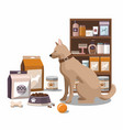pets accessories with dog pet shop vector image