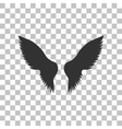 Wings sign Dark gray icon on vector image
