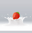 yogurt splash with berry red strawberry fruits vector image