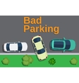 Bad parking car parked on the lawn vector image