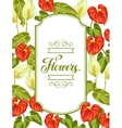 Decorative frame with flowers spathiphyllum and vector image vector image