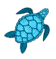 Sea turtle in line art style Hand drawn Design vector image