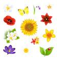 Big Flowers And Leaf Set vector image