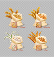 agricultural cereals sacks isolated on transparent vector image vector image