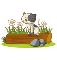 isolated picture cat on log vector image