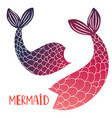 mermaid tails isolated on white background vector image vector image