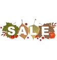 Sale of autumn leaves Autumn leaves of tree vector image